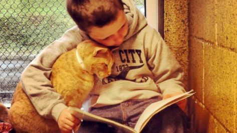 More of this please, with or without a cat ... anything to get kids reading. I found no pictures of me reading, I guess because it's so static an activity. Image from Animal Rescue League of Berks County.