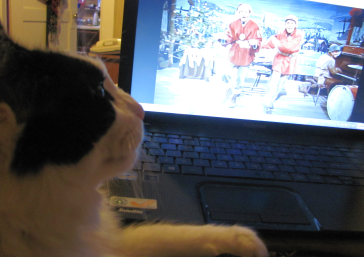 OK, fine, I'll watch White Christmas with you. Just give me more nip, please.