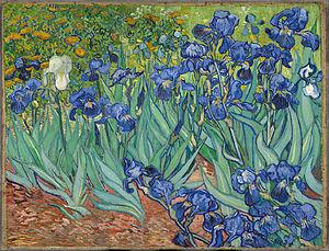 Irises, by Vincent van Gogh.