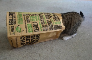You'd better get started, honey. Fred's already half in the bag. Image found on CuteOverload.