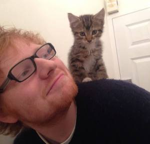 Ed Sheeran and his kitten Graham. Image from Ed Sheeran's Instagram via LoveMeow.