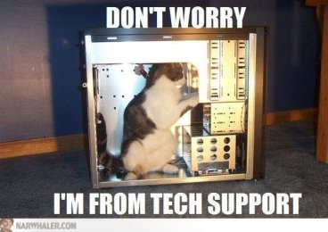 Have no fear, cat support is here! Image found on imgarcade.