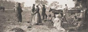 For some, Southerners must admit, the right to own slaves was the chief reason for the war. Image found on PBS.