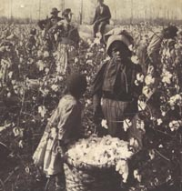 Even after the war, life wasn't all that rosy for many former slaves who had freedom and nothing else; many became sharecroppers just scraping by. Image found on Civil War Experience.
