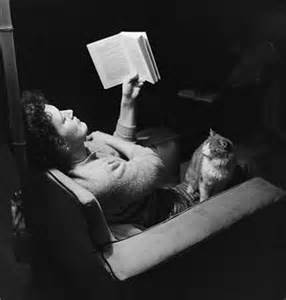 So you think you can prevent me from disrupting your reading? Silly, silly woman! Image found on Library of Cats.