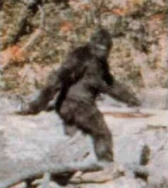 Bigfoot or big hairy guy on a bender? Image found on Wikipedia.