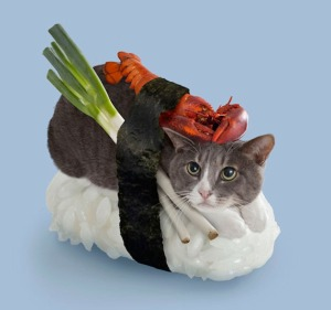 Dude, that's the last time I take you up on a sushi dinner! Image found on IncredibleThings.