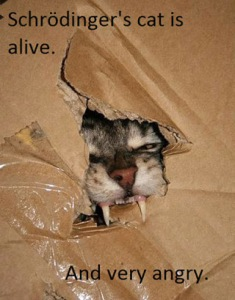 You'd better have the wet food ready if you value your life! Found on Jaana Nystrom's Google+ page.
