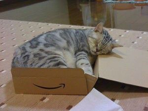Warning, contents mat have settled down for a snooze during shipping. Image found on Pinterest.