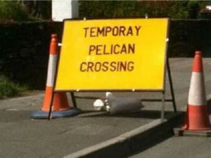 This one, on the other hand ... unless there's such a thing as a temporay pelican. Image found on odometer.com.