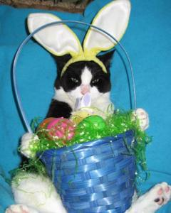 Nope, the basket's all mine. My humiliation has to count for something! Image found on paperblog.