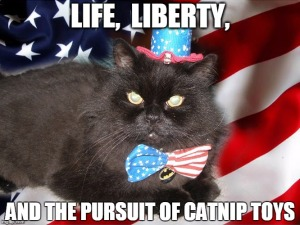 Catnip = happiness, you guys, duh! Image found on imgflip.