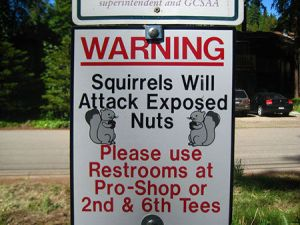Consequently, I don't go out much when the squirrels are about ... Image found on MadCow.