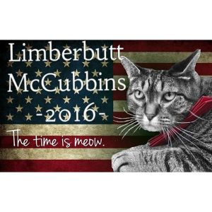 Limberbutt for president! We can trust him! Image found on Limberbutt.com.