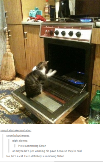 How'd the cat get the oven door open? Satan. Image found on BuzzFeed.