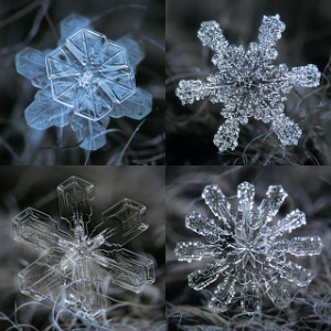 Now these are special snowflakes, and they don't need cocoa, coloring books or cocoa. Image found on The Keys to December.