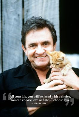 Of course, you knew I'd figure out how to get a cat in here. Wise words, Johnny. Image found on Pinterest.